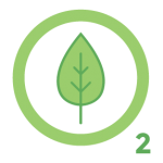 tree oxygen icon The Green Truck Moving & Storage Company